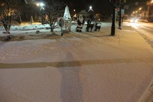 Snow, Depot Square Park, Tamaqua, 1-18-2014 (8)