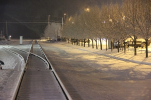 Trees, Train Tracks, S. Railroad Street, Snow, Tamaqua, 1-18-2014 (2)