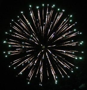 Fireworks Display, Port Carbon, 7-4-2014 (318)