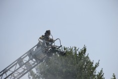 Fire, Bugsy's Hill, SR902, Summit Hill, 8-8-2014 (233)
