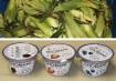 Free Corn and Greek Yogurt, Salvation Army, Tamaqua, 8-22-2014 (COMBINED)