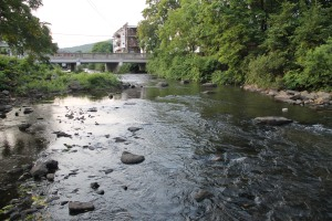 Pre Schuylkill River Cleanup, Next to Boyer's Food Market, Tamaqua, 8-7-2014 (25)