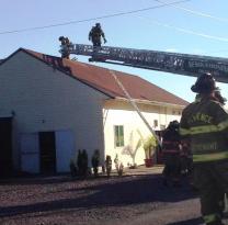 Firefighter Response, via Tori Koerbler, Dimaggios, Nesquehoning 11