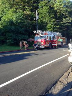 Firefighter Response, via Tori Koerbler, Dimaggios, Nesquehoning 5