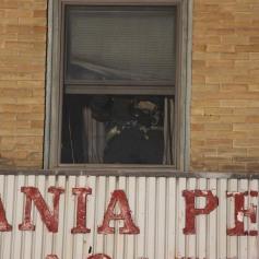 Smoke Scare, 12, 14 West Broad Street, Tamaqua, 12-5-2014 (59)