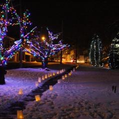 Tree Lighting, Santa, Lansford Alive, Kennedy Park, Lansford, 11-29-2014 (115)
