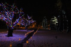 Tree Lighting, Santa, Lansford Alive, Kennedy Park, Lansford, 11-29-2014 (123)