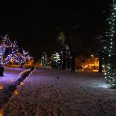 Tree Lighting, Santa, Lansford Alive, Kennedy Park, Lansford, 11-29-2014 (125)