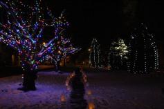 Tree Lighting, Santa, Lansford Alive, Kennedy Park, Lansford, 11-29-2014 (128)