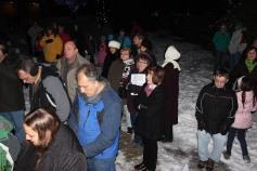 Tree Lighting, Santa, Lansford Alive, Kennedy Park, Lansford, 11-29-2014 (15)
