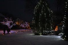 Tree Lighting, Santa, Lansford Alive, Kennedy Park, Lansford, 11-29-2014 (20)
