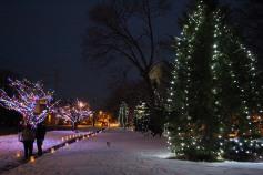 Tree Lighting, Santa, Lansford Alive, Kennedy Park, Lansford, 11-29-2014 (24)