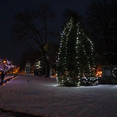 Tree Lighting, Santa, Lansford Alive, Kennedy Park, Lansford, 11-29-2014 (36)