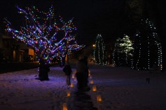 Tree Lighting, Santa, Lansford Alive, Kennedy Park, Lansford, 11-29-2014 (44)