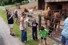 Open House, Horses and Horizons Therapeutic Learning Center, West Penn Township, 6-7-2015 (22)