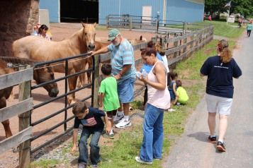 Open House, Horses and Horizons Therapeutic Learning Center, West Penn Township, 6-7-2015 (27)