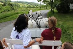 Open House, Horses and Horizons Therapeutic Learning Center, West Penn Township, 6-7-2015 (38)