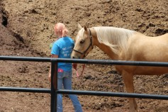 Open House, Horses and Horizons Therapeutic Learning Center, West Penn Township, 6-7-2015 (41)