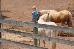 Open House, Horses and Horizons Therapeutic Learning Center, West Penn Township, 6-7-2015 (42)