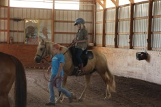Open House, Horses and Horizons Therapeutic Learning Center, West Penn Township, 6-7-2015 (65)