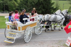 Open House, Horses and Horizons Therapeutic Learning Center, West Penn Township, 6-7-2015 (7)
