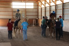 Open House, Horses and Horizons Therapeutic Learning Center, West Penn Township, 6-7-2015 (71)