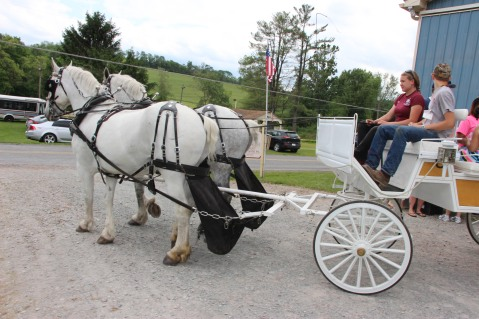 Open House, Horses and Horizons Therapeutic Learning Center, West Penn Township, 6-7-2015 (93)