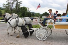 Open House, Horses and Horizons Therapeutic Learning Center, West Penn Township, 6-7-2015 (94)