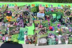 Season Grand Opening, Lansford Community Garden, Lansford, 6-13-2015 (11)