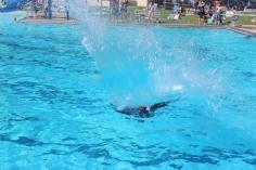 Splash Day, H.D. Buehler Memorial Bungalow Pool, Park, Tamaqua, 7-25-2015 (249)