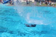 Splash Day, H.D. Buehler Memorial Bungalow Pool, Park, Tamaqua, 7-25-2015 (250)