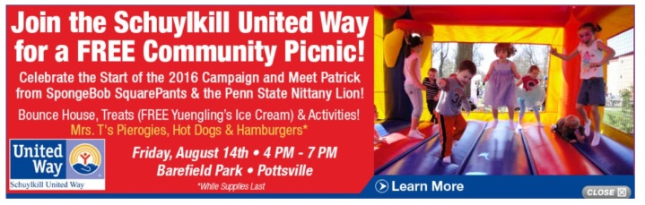 8-14-2015-schuylkill-united-way-community-picnic-barefield-park-pottsville