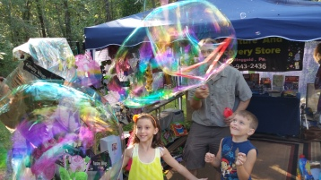 Faerie FanFaire Festival, Fairies, Stonehedge Gardens, South Tamaqua, 8-22-2015 (120)
