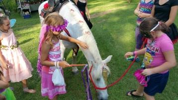 Faerie FanFaire Festival, Fairies, Stonehedge Gardens, South Tamaqua, 8-22-2015 (203)