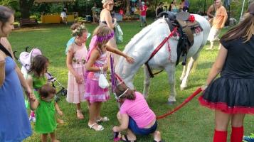 Faerie FanFaire Festival, Fairies, Stonehedge Gardens, South Tamaqua, 8-22-2015 (204)