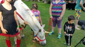 Faerie FanFaire Festival, Fairies, Stonehedge Gardens, South Tamaqua, 8-22-2015 (206)