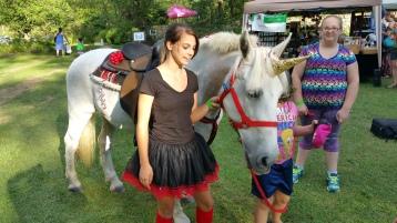 Faerie FanFaire Festival, Fairies, Stonehedge Gardens, South Tamaqua, 8-22-2015 (210)