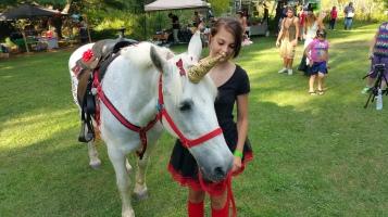 Faerie FanFaire Festival, Fairies, Stonehedge Gardens, South Tamaqua, 8-22-2015 (224)