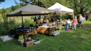 Faerie FanFaire Festival, Fairies, Stonehedge Gardens, South Tamaqua, 8-22-2015 (40)