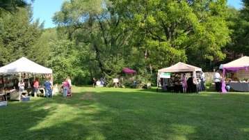 Faerie FanFaire Festival, Fairies, Stonehedge Gardens, South Tamaqua, 8-22-2015 (47)