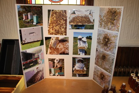 Join The Bee Keeper, Information Session, Tamaqua Community Arts Center, Tamaqua, 8-15-2015 (12)