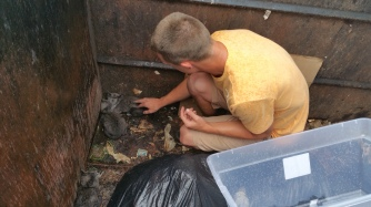 Kittens in Dumpster, Sisters Cantina, Tamaqua, 8-19-2015 (28)