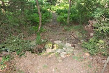 Making New Bicycle Trails, Owl Creek Reservoir, Tamaqua, 7-26-2015 (14)