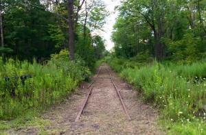 Photos of Train Tracks, from Jeff Knadler, Lansford, 8-12-2015 (1)