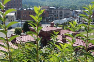 Photos with Scott Herring, around Tamaqua, 8-18-2015 (9)