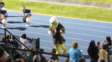 Blue Out Football Game, Benefit for Thelma Urban, Raider Band, Sports Stadium, Tamaqua, 9-4-2015 (451)