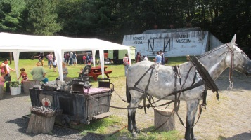 Old Fashioned Miner's Labor Day Picnic, No. 9 Coal Mine & Museum, Lansford, 9-6-2015 (67)