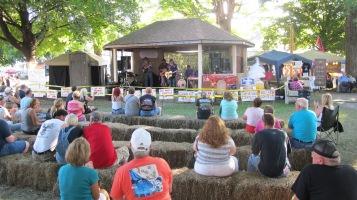 Redneck Festival 2015, Weissport, 9-6-2015 (107)