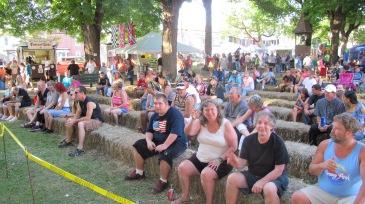 Redneck Festival 2015, Weissport, 9-6-2015 (110)