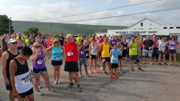 Run For The Ice Cream Charity Challenge 5K, Heisler's, 9-5-2015 (107)